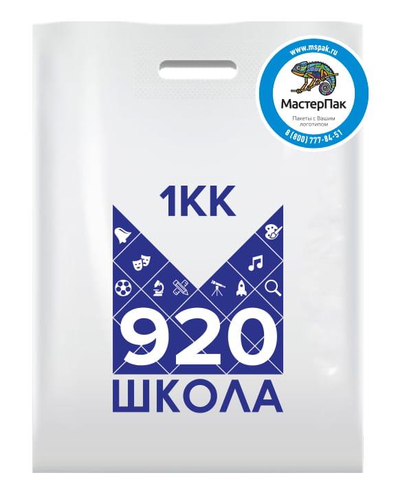 Пакет ПВД с вырубной ручкой и логотипом 1КК 920 школа, 70 мкм